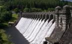 El salmón y la trucha arco iris vuelven al río Elwha cien años después