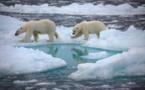 El hielo marino ártico ya está sentenciado