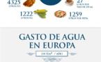 El 20 por ciento del agua en Europa se pierde por su mala gestión