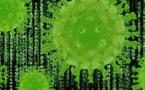 Indicios de que el coronavirus puede afectar al sistema nervioso