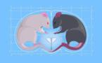 La hormona del amor también nos puede volver agresivos