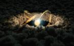 La formación de nuevos planetas prolifera en el universo