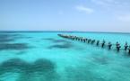 Aparecen restos de una ciudad sumergida en el Caribe