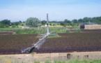 La modernización de los regadíos ahorra agua pero dispara el coste energético
