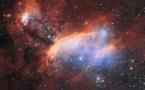 ESO fotografía la Nebulosa de la Gamba, donde están naciendo estrellas