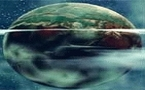 El 83% de la superficie de la Tierra está afectado por el impacto humano