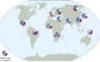 La genética permite reconstruir la historia de las migraciones humanas