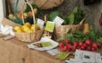 La agricultura ecológica sí puede competir con la agricultura convencional, señala un estudio