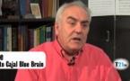 Javier de Felipe: Llegaremos a construir un cerebro humano