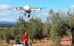 Científicos del CSIC usan drones para cartografiar árboles en 3D