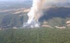 Un modelo matemático determina qué tipo de incendio tendrá cada paisaje