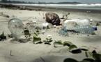 Colectores de plástico en las costas, la mejor manera de limpiar los océanos