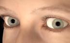 Nuevo método reconstruye al detalle ojos virtuales a partir de una fotografía