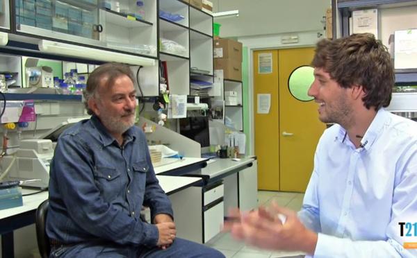 La Biotecnología Microbiana, eficaz contra las infecciones y el cáncer